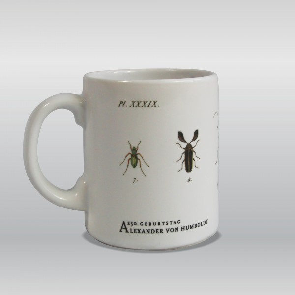 Tasse Käfer nach Motiven von Alexander von Humboldt