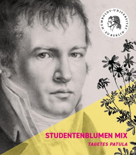 Samentütchen Studentenblume